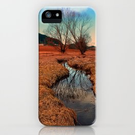 A stream, dry grass, reflections and trees | waterscape photography iPhone Case