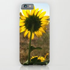 Light through the Sunflower iPhone 6s Slim Case