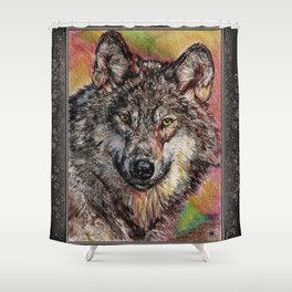 Portrait of a Gray Wolf Shower Curtain