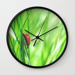 Small beetle in high grass Wall Clock