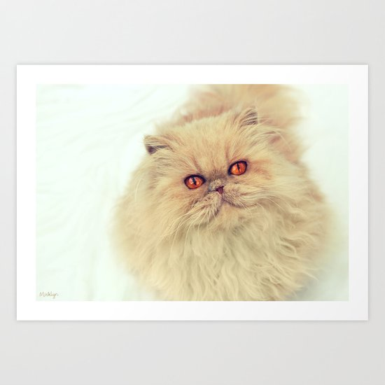 Who are you calling a big ball of fur?  Art Print