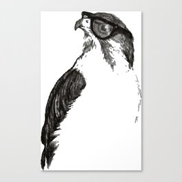 Far Sight Canvas Print