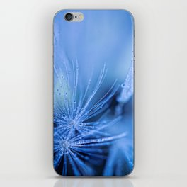 Dandelion fluff iPhone Skin