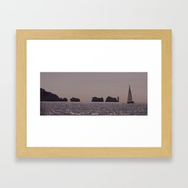 Needles Framed Art Print