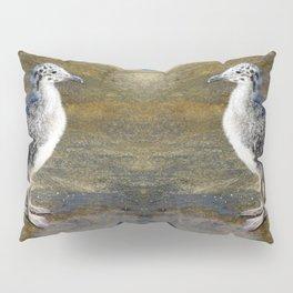 Ring-billed Gull Chick Pillow Sham