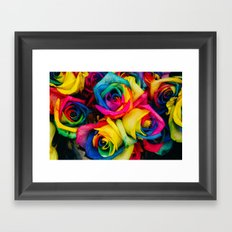 rainbow roses Framed Art Print