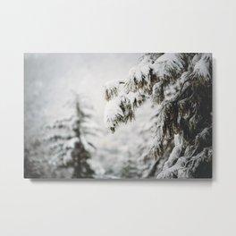Snowy Branches Metal Print