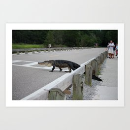 Alligator Watch Art Print