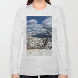 Minerva Spring and Terrace Long Sleeve T-shirt