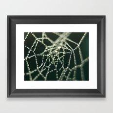 Water Beads Framed Art Print