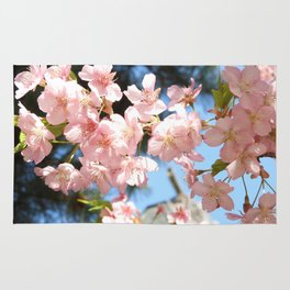 Pink Cherry Blossoms 2 Rug