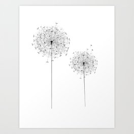 Two  Dandelion Art Print