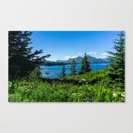 3 Trees-Wide Angle Canvas Print