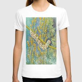 Cucullia Absinthii Caterpillar T-shirt