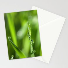 Morning dew 8548 Stationery Cards