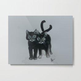 Kitten siblings Metal Print