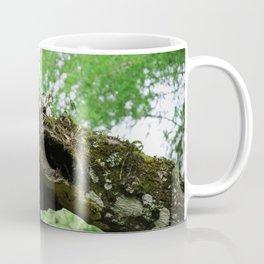 The Scars of Your Love Coffee Mug