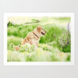 Golden Retriever Chance Art Print