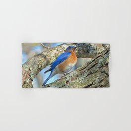 Bluebird in Tree Hand & Bath Towel