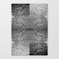 Polarity Canvas Print