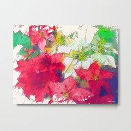 Mixed color Poinsettias 1 Serene Metal Print