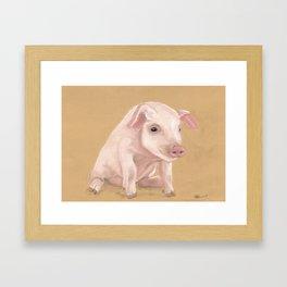 Lil Pete from Longbottom Farm Framed Art Print