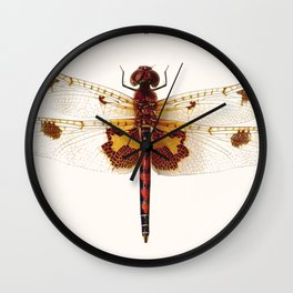 Dragonfly Collector Wall Clock