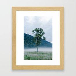 South Westland at dawn Framed Art Print