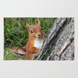 Nature woodland animals smiling squirrel Rug