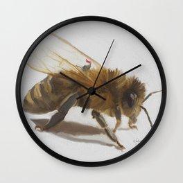 Sir Knights and his nobel Bee Wall Clock