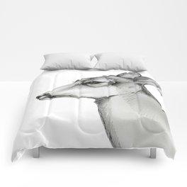 Doe a Deer/Always Comforters