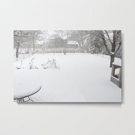 the backyard Metal Print