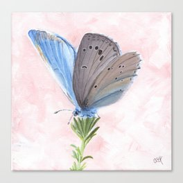 Blue and Purple Butterfly Art Canvas Print