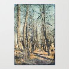 Memory lane Canvas Print