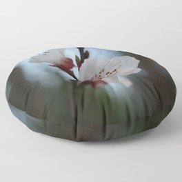 Close Up Apricot Blossom In Pastel Shades Floor Pillow