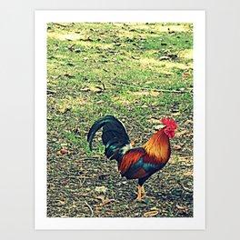 COCK~A~DOODLE~DOO Art Print