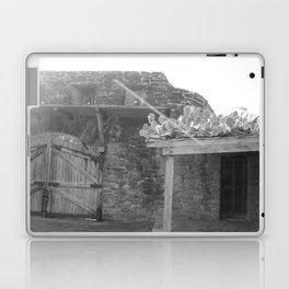Rooftop Cacti Laptop & iPad Skin