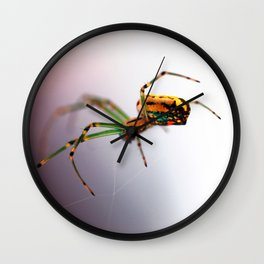 Colorful Spider Wall Clock