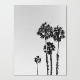 Palms, Trees, Beach, Nature, Modern art, Scandinavian, Art, Minimal, Wall art Canvas Print