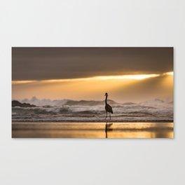 A Great Blue Heron Ocean Sunset at Cape Perpetua, Oregon Canvas Print