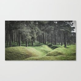 Altered Landscape Canvas Print