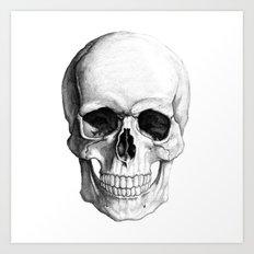 Skull in black & white Art Print