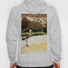 East African Crowned Crane Hoody