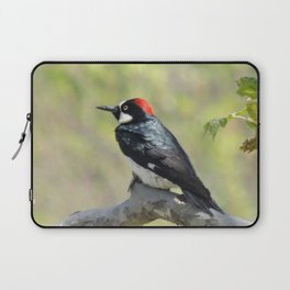 Acorn Woodpecker At Rest Laptop Sleeve