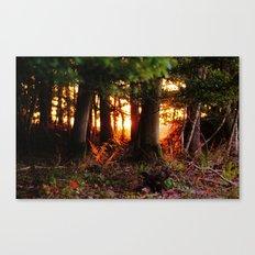 Märchenwald Canvas Print