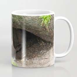 Eyes within an eye Coffee Mug
