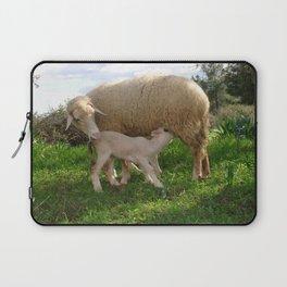 Lamb Suckling From An Ewe Laptop Sleeve