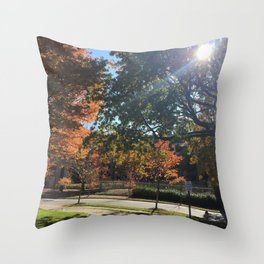 A Fall Day Somewhere in Ohio Throw Pillow