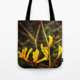Yellow Kangaroo Paw flower against a blurred background Tote Bag