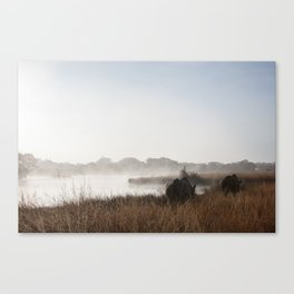 Saving Rhinos Canvas Print